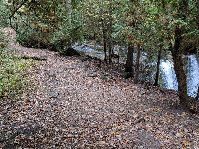 Trail beside Hogg's Falls