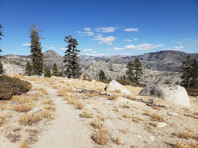 Up on moraine ridge, straight north of Lake Vernon