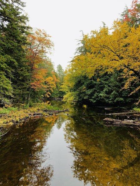 Fish Creek from Bridge