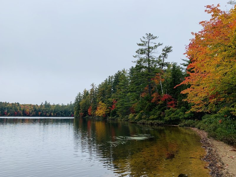 Floodwood Pond from the South