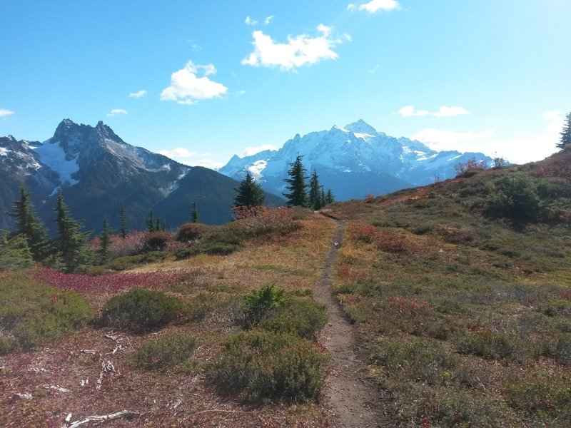Open benches at around 3 miles or so. Mt Shuksan on right, Mt. Sefrit on left.