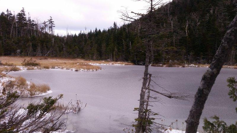 Elk Pass Pond