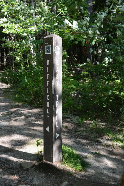 Left for the difficult route or right for the easy route. Both are walk-able.