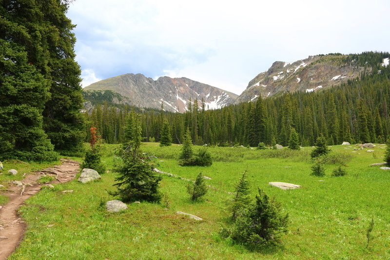 Trail along lower meadow as you enter Indian Peaks Wilderness