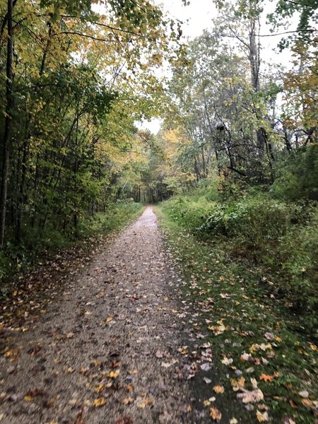 Rockingham Recreational Trail; Newfields section