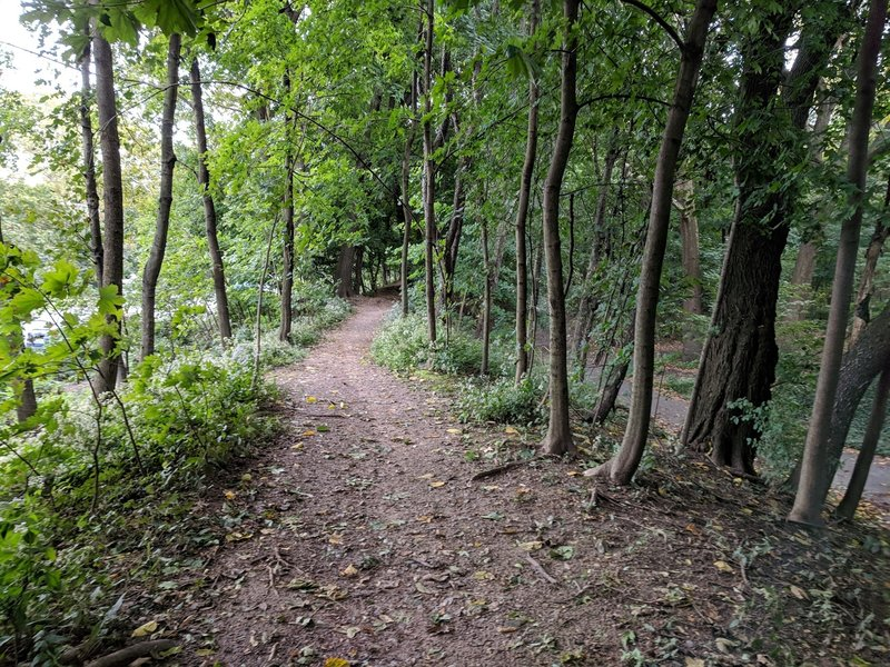 Prospect Park Flatbush Ave side trail
