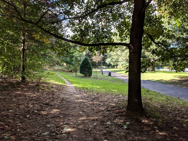 Prospect Park SW trail, looking North