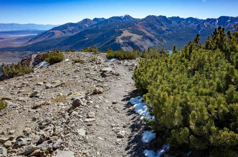 Looking down the Dragon's Back Trail from the ridge below the summit of Mammoth Mountain.