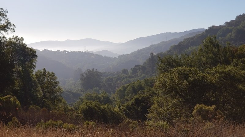 Vista from Zinfandel Trail
