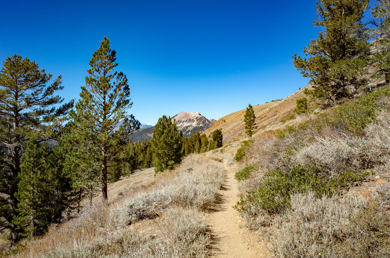 Mammoth Mountain viewed from the Heart Lake Trail.