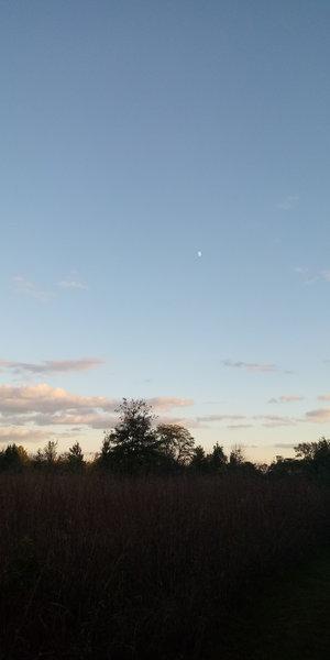The evening sky over Blue Stem Trail