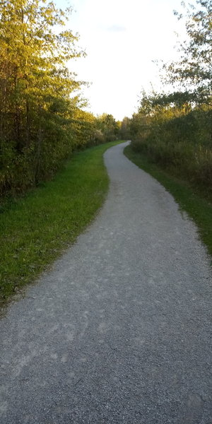Shagbark Loop Trail