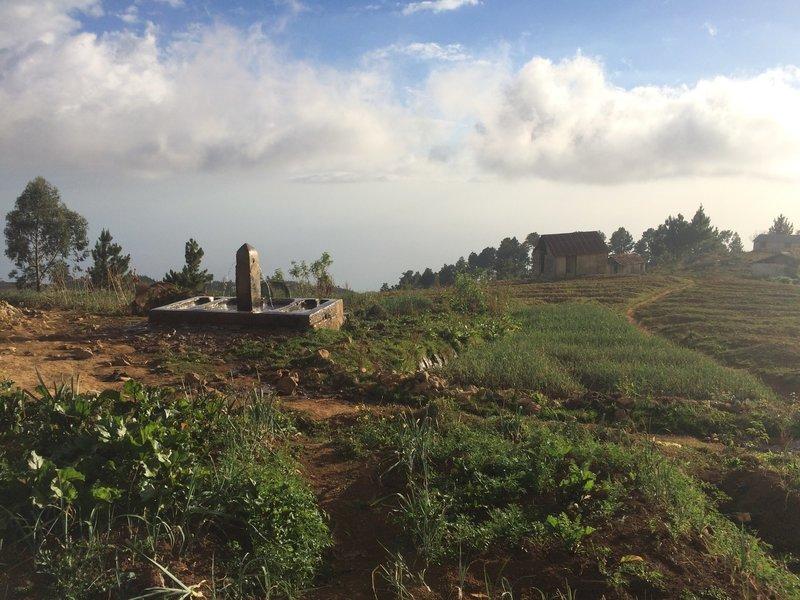 seguin farm with water trough