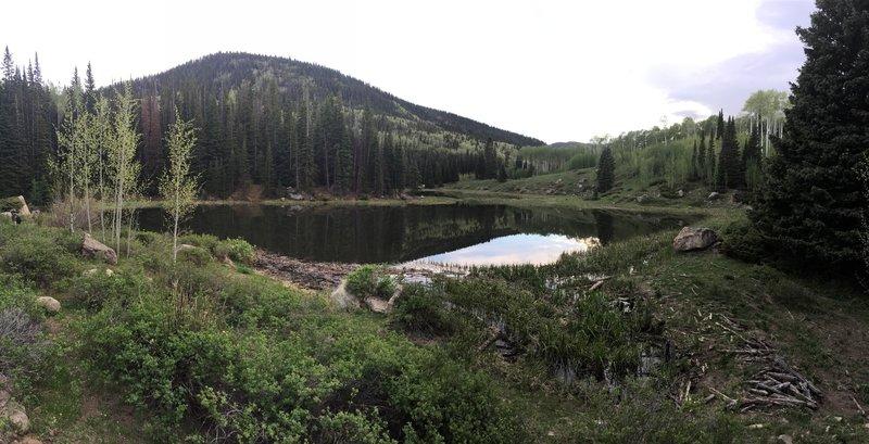 Lake Ridge Lakes.