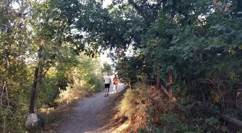 Local running group running the Surface Creek Trail.