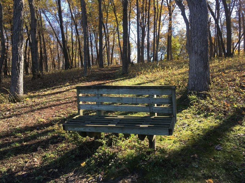 Bench overlooking Founders Pond