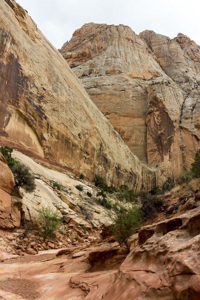 Amazing slick rock formations at the heart of Sheets Gulch