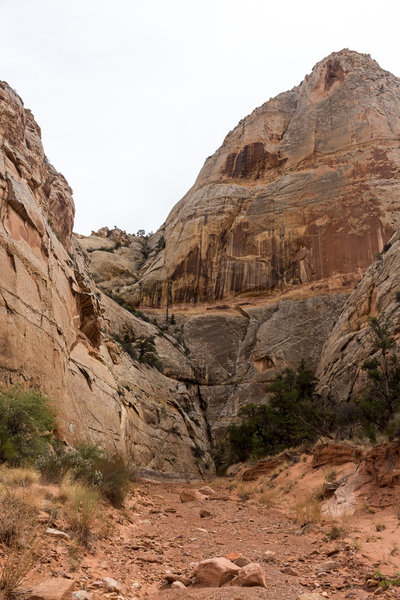 As you get deeper into Sheets Gulch, the canyon wall get higher and higher