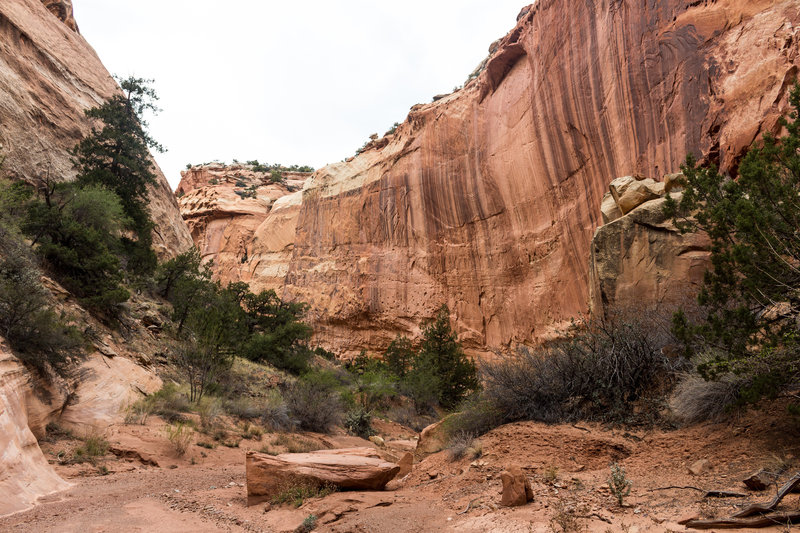 Sheets Gulch carved into the rock over millions of years
