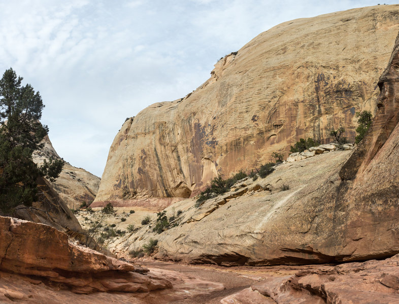 One of the many impressive turns in Sheets Gulch