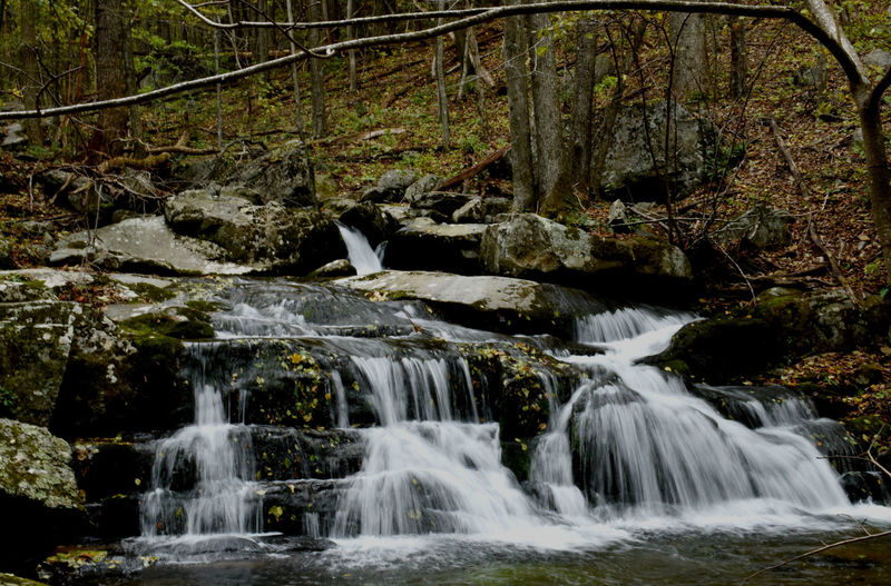 One of the many cascading falls as you descend Rose River Loop