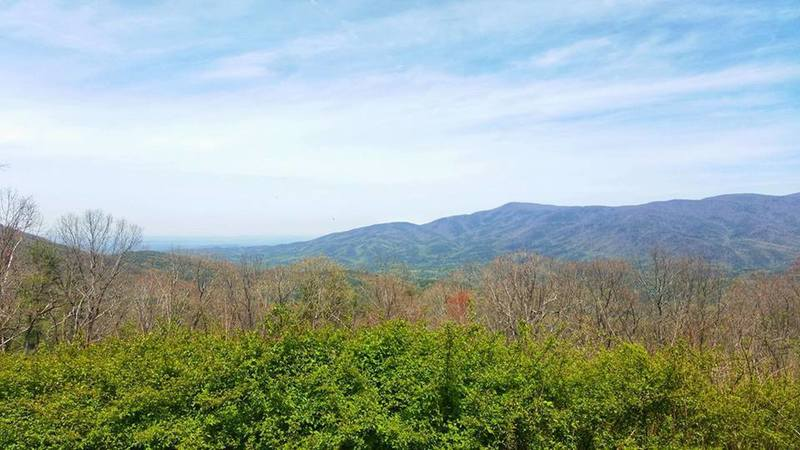View from Cohutta Overlook along 52