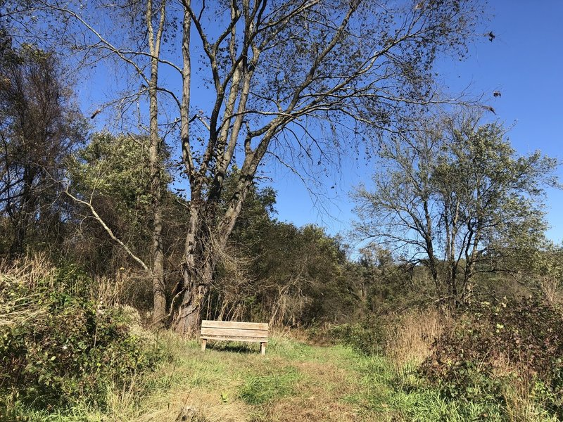 One of many benches along the trail