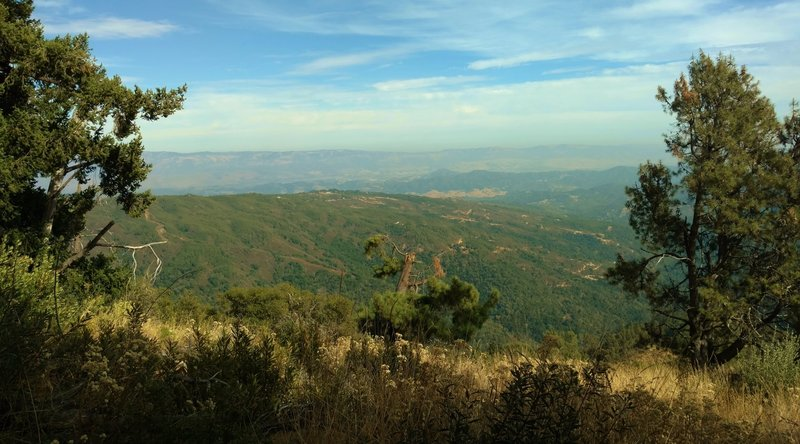 Views to the east stretch across the Santa Cruz Mountains and Santa Clara Valley, all the way to the Diablo Range in the distance when approaching the top of Knibbs Knob.