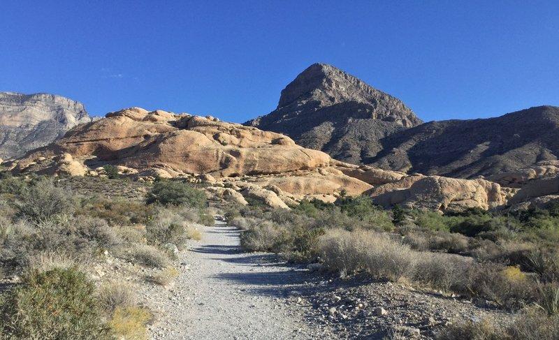 Heading to Turtlehead Mountain.