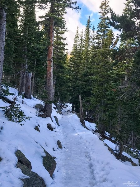 October 25, 2018 - The Flattop Mountain Trail turns into this. Packed powder with ice. BRING CRAMPONS/TRACTION!