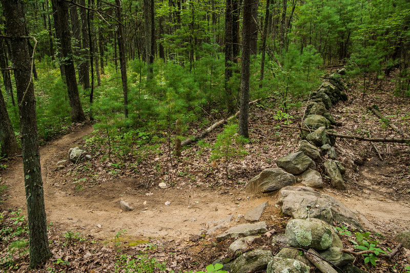 No New England trail would be complete without a stone wall crossing. This is a fairly easy one on Upper Owl.