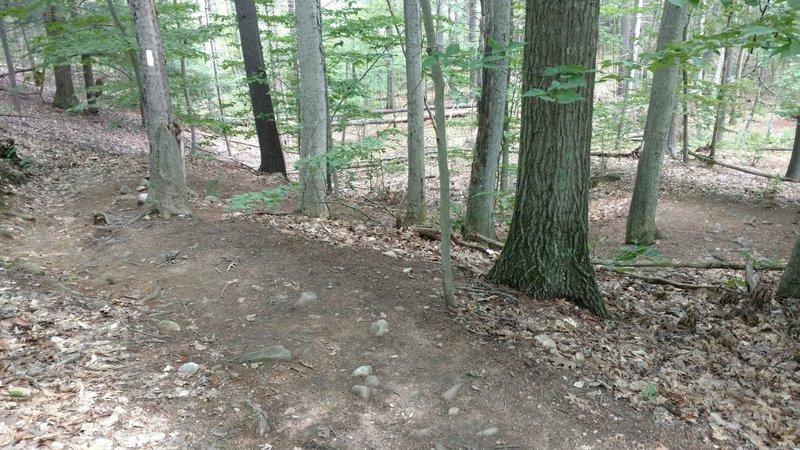Heartbreak Ridge starts with a steep winding climb, shown here.