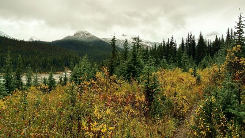 Fall color and snow on the mountains along the North Boundary Trail as it follows the Smoky River in September.