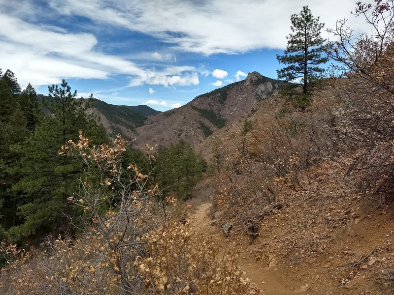 The trail leads mostly through pine forest however it has a couple points where the scenery breaks up to some great landscapes.