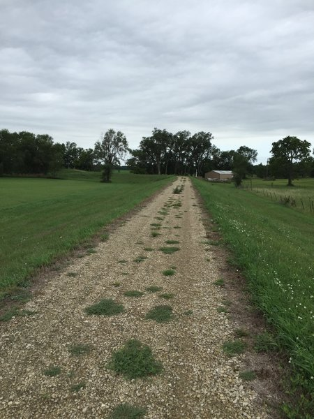 The levee trail is all a fine to small rock surface.