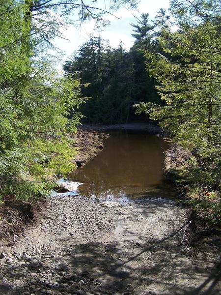 Where Crane Pond Road Crosses Alder Pond