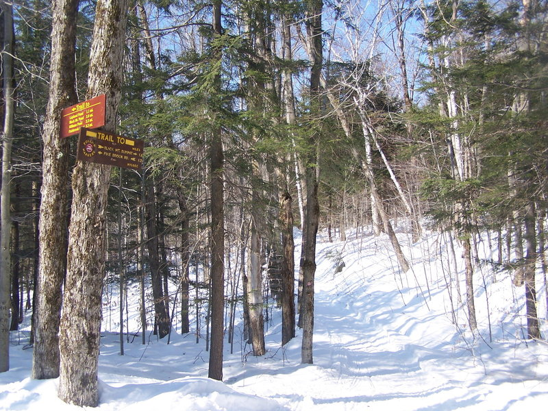 Trail intersection in the winter.