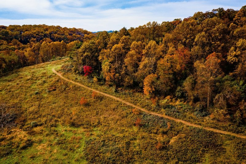 Trail via drone.
