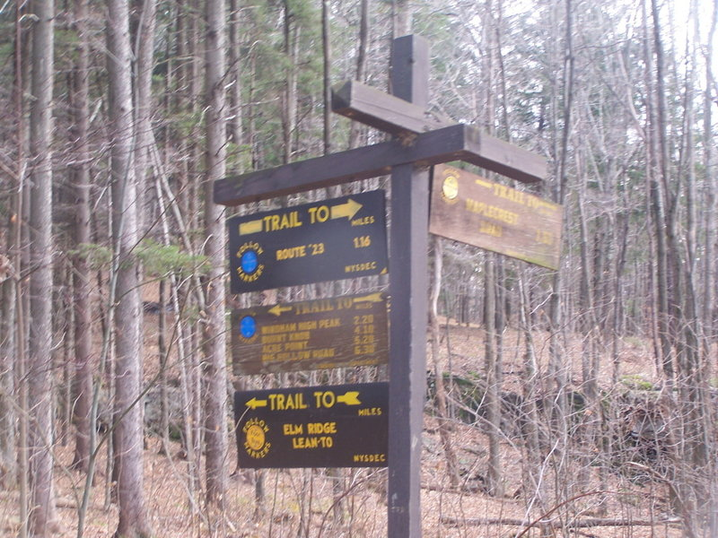 Intersection of Maplecrest Road and Windham High Peak Trail