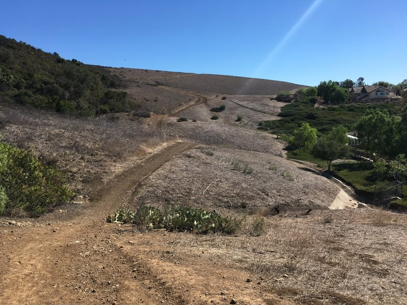 The trail meanders across the hillside