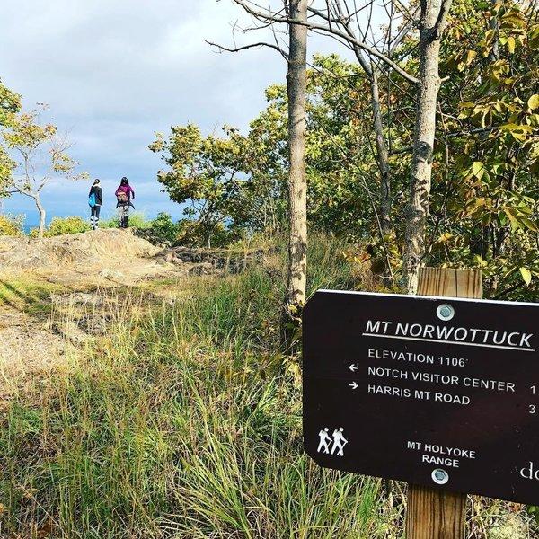 Mt Norwottuck, Mount Holyoke Mountain Range, MA.