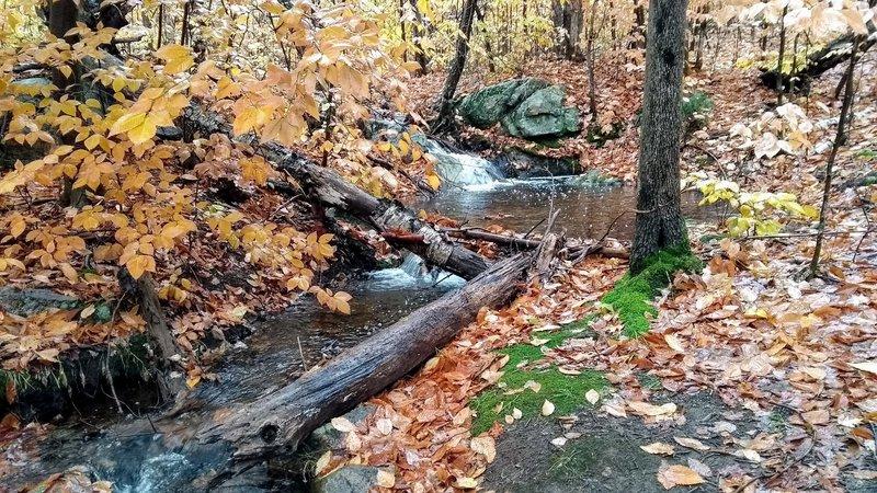 Nice creek in fall.