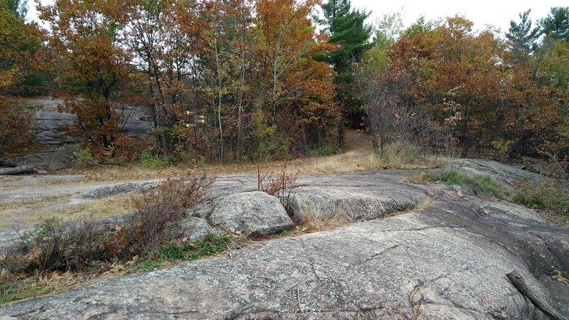 Bald rock spot at the top.