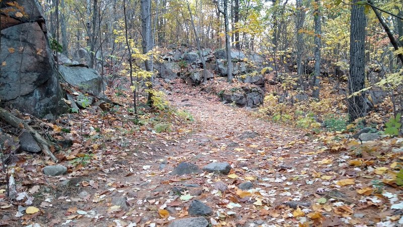 Easy-to-follow trail.