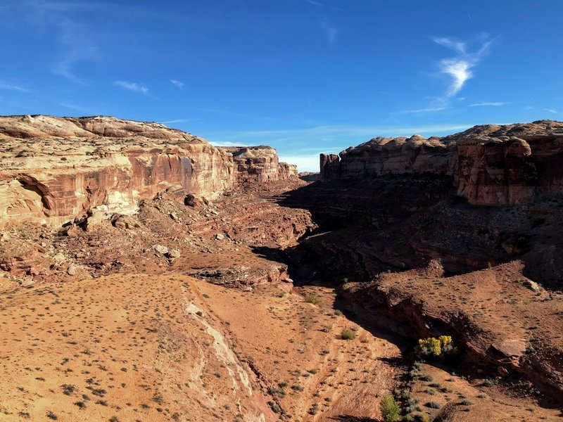 Looking down into Horseshoe Canyon