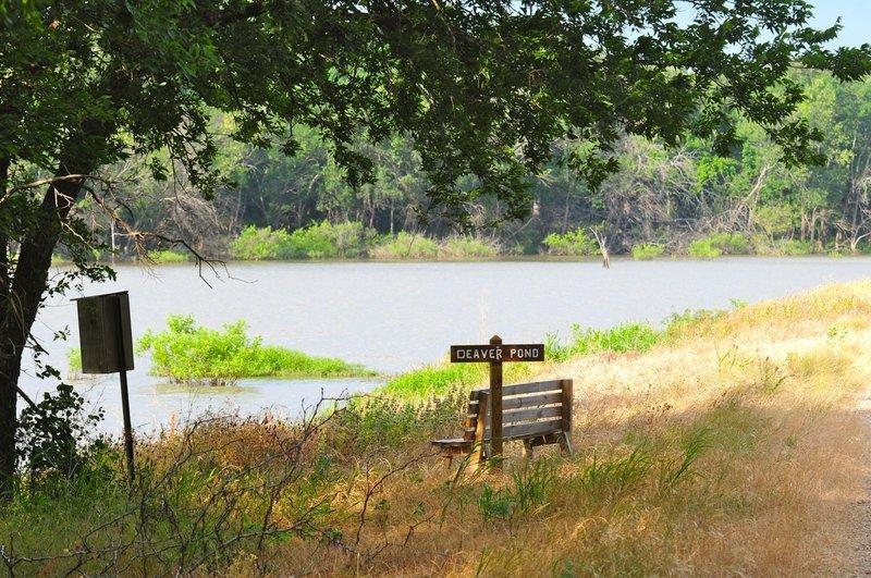 Meadow Pond Trail at Hagerman National Wildlife Refuge near Denison, Texas
