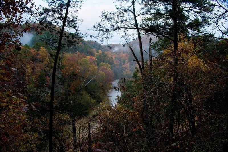North Sylamore Creek in early November.