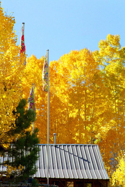 Tahoe Gold -- aspens at Sorensen's Resort