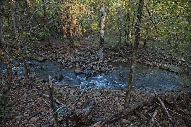 Reece Creek divides into three channels where the Ouachita Trail crosses.  This is the middle channel.