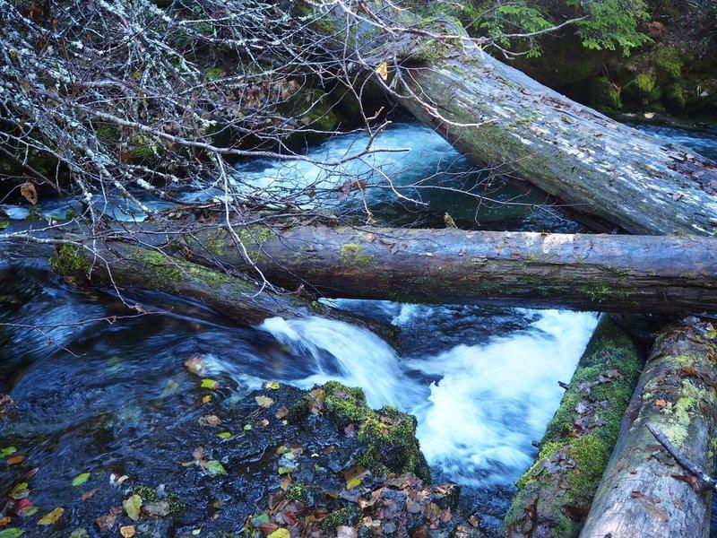 A logjam in Union Creek